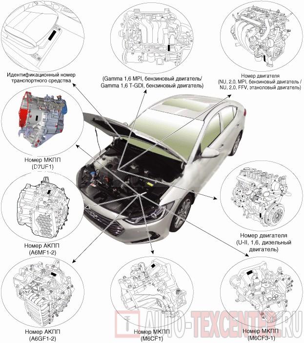 Расположение вин номера Hyundai Elantra 6 (AD)